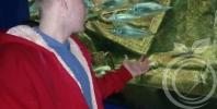 Экскурсия в Севастопольский Аквариум-музей